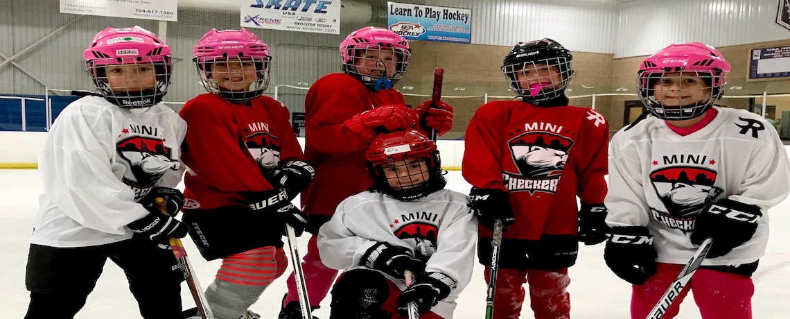 Click Here to Register for Girls Hockey Skills Day on 2/17/19