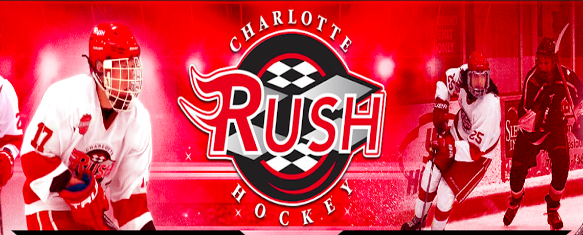 Click Here for the Charlotte Rush Year-End Letter